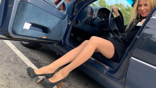 лиса рулит в машине
